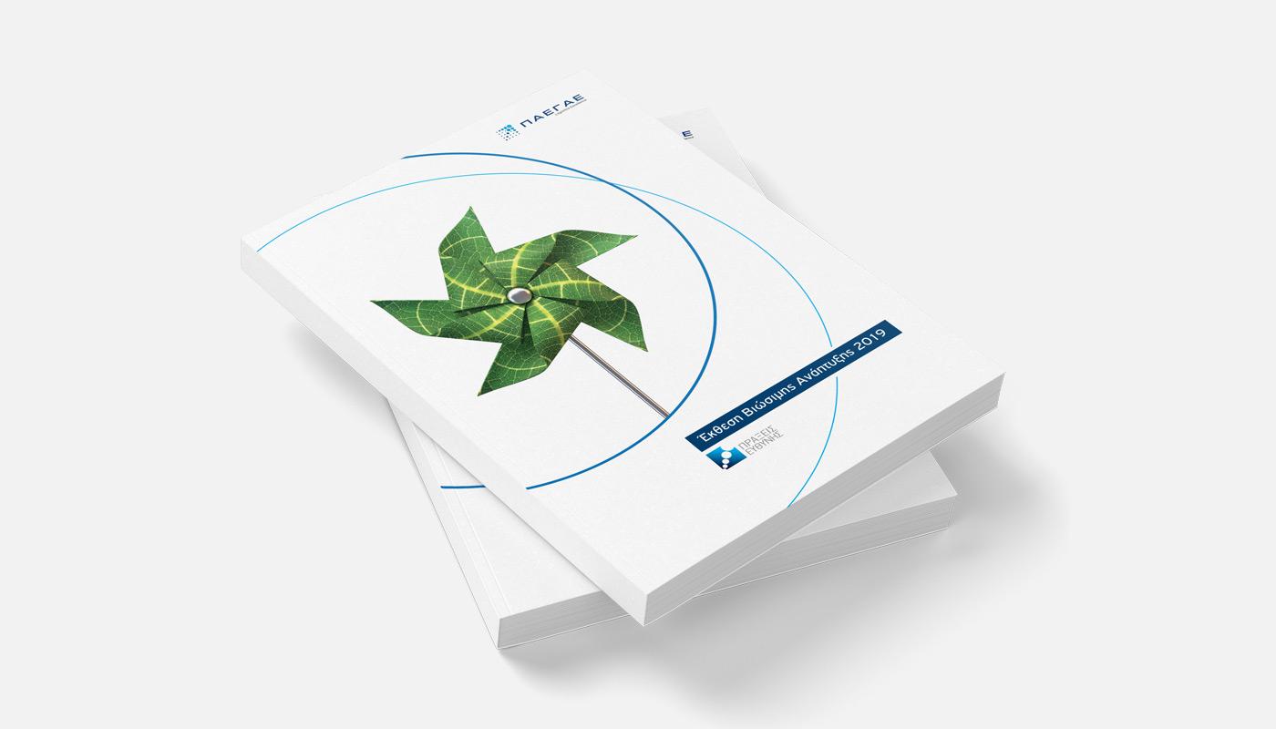 PAEGAE CSR Report 2019